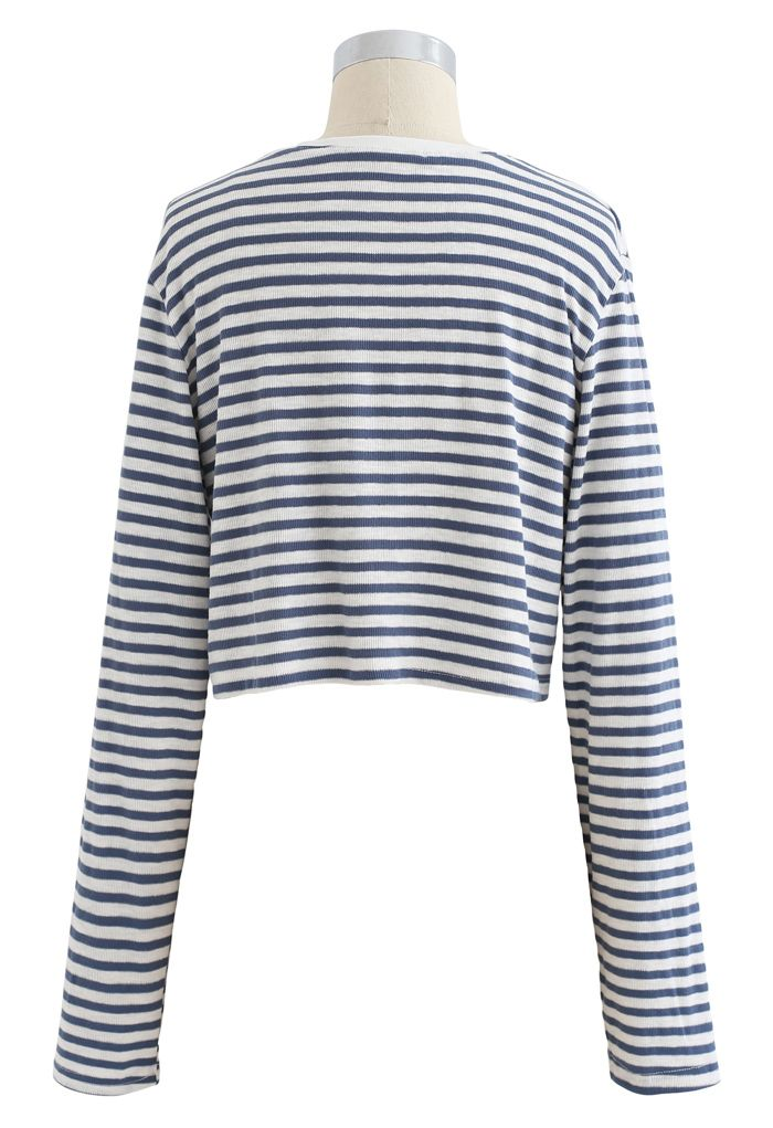 Cropped Long Sleeves Stripes Knit Top in Dusty Blue